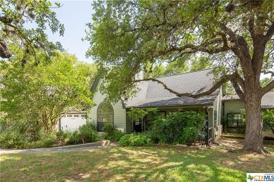 Wimberley Single Family Home For Sale: 303 Mesa Drive