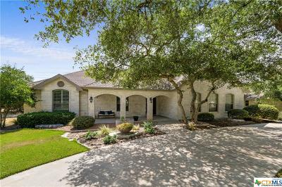 Georgetown Single Family Home For Sale: 217 Silver Leaf Drive