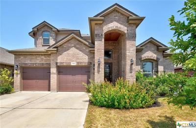 San Marcos TX Single Family Home For Sale: $365,000