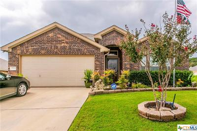 Killeen Single Family Home For Sale: 3700 Cotton Patch Drive