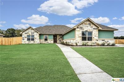 Belton Single Family Home For Sale: 8361 Goliath Drive