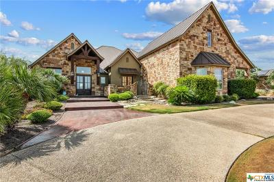New Braunfels Single Family Home For Sale: 1225 Vintage Way
