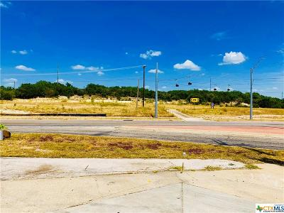 Harker Heights Commercial For Sale: 2410 E Fm