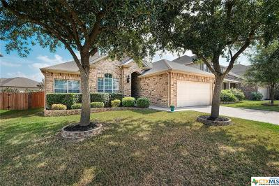 Round Rock Single Family Home For Sale: 107 Fred Couples Drive