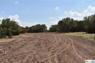 Bell County, Burnet County, Coryell County, Lampasas County, Llano County, McLennan County, Mills County, San Saba County, Williamson County Residential Lots & Land For Sale: 81 S Cr 412