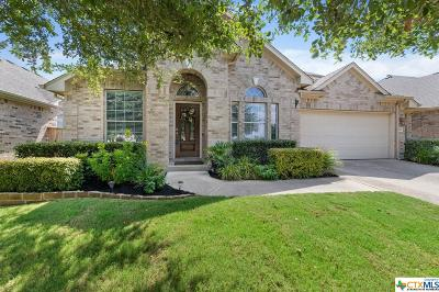 Leander Single Family Home For Sale: 1920 Cross Draw Trail
