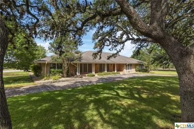 Kyle TX Single Family Home For Sale: $895,000