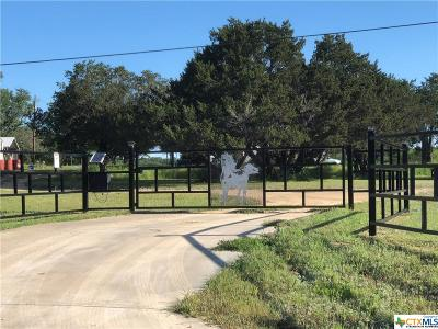 Kempner Single Family Home For Sale: 4115 County Road 4390