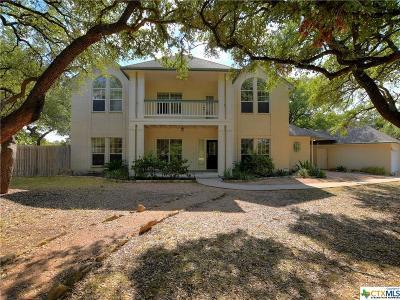 Cedar Park Single Family Home For Sale: 205 Breakaway Road