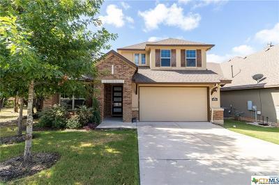 Georgetown Single Family Home For Sale: 604 Fair Oaks Drive