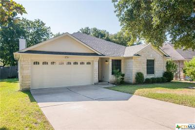 Austin Single Family Home For Sale: 7411 Spivey Drive