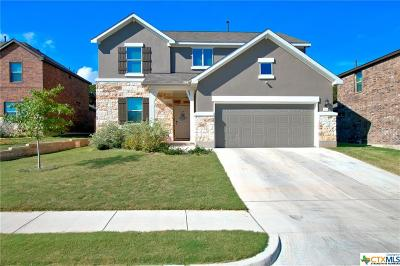 Hays County Single Family Home For Sale: 213 Mary Max Circle