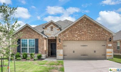 New Braunfels Single Family Home For Sale: 2713 Ridge Path Drive