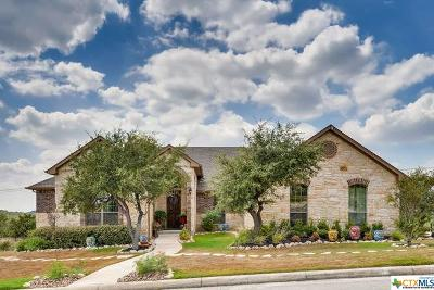 San Antonio Single Family Home For Sale: 26015 Tivoli Meadow