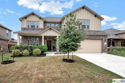 New Braunfels Single Family Home For Sale: 1730 Village Springs