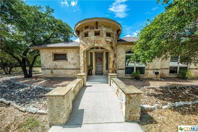 Hays County Single Family Home For Sale: 2824 Mountain High Drive
