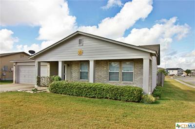 New Braunfels Single Family Home For Sale: 667 Crosspoint Drive