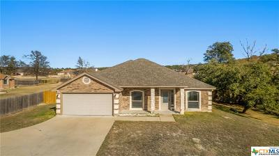 Copperas Cove Single Family Home For Sale: 3508 Big Divide Road