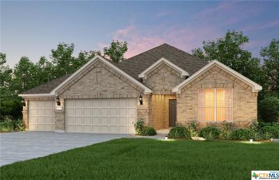 New Braunfels Single Family Home For Sale: 2190 Indigobush Drive