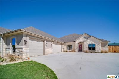 Bell County Single Family Home For Sale: 109 Vista De Luna Lane