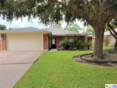Cedar Park Single Family Home For Sale: 1207 Meghan Drive