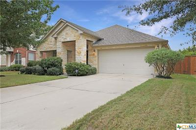 Coryell County, Falls County, McLennan County, Williamson County Single Family Home For Sale: 2848 Angelina Drive