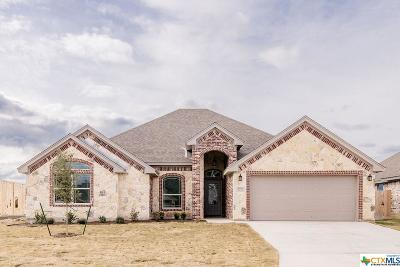 Bell County Single Family Home For Sale: 2508 Turtle Dove Drive