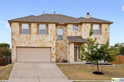 Hays County Single Family Home For Sale: 643 Shadow Creek Boulevard