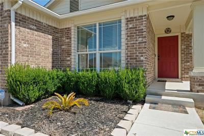New Braunfels Single Family Home For Sale: 2121 Conner Drive