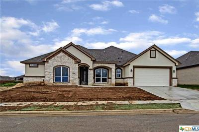 Bell County Single Family Home For Sale: 3609 Dodge City Drive