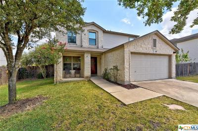 Hays County Single Family Home For Sale: 881 New Bridge Drive