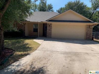 Belton Single Family Home For Sale: 13 Basswood Court