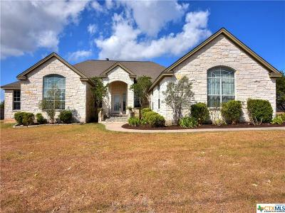 Coryell County, Falls County, McLennan County, Williamson County Single Family Home For Sale: 118 Laura Lane