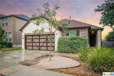 Boerne Single Family Home For Sale: 133 Cactus Flower