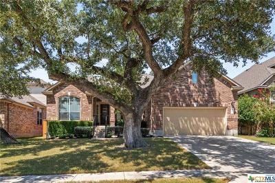 Coryell County, Falls County, McLennan County, Williamson County Single Family Home For Sale: 419 Atlanta Park Drive