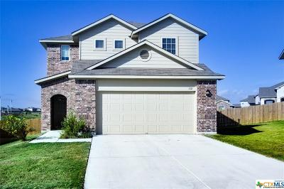 Hays County Single Family Home For Sale: 132 Blair Court