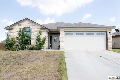 Coryell County, Falls County, McLennan County, Williamson County Single Family Home For Sale: 1210 Hogg Court