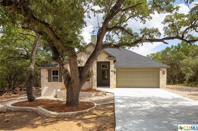 Wimberley Single Family Home For Sale: 24 Round Bluff Circle