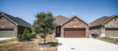 Comal County Single Family Home For Sale: 2079 Stepping Stone