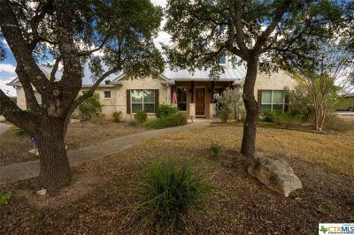 Comal County Single Family Home For Sale: 425 Mystic Parkway