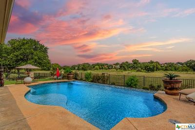 Georgetown Single Family Home For Sale: 125 Dovetail Lane