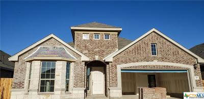 Hays County Single Family Home For Sale: 318 Durata