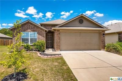Hays County Single Family Home For Sale: 316 Unity