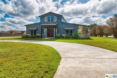 Salado Single Family Home For Sale: 535 Van Bibber Road