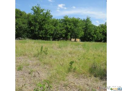 Bell County, Burnet County, Coryell County, Lampasas County, Llano County, McLennan County, Mills County, San Saba County, Williamson County Residential Lots & Land For Sale: 214 N 52nd Street
