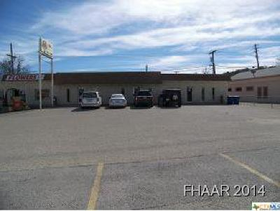 Copperas Cove Commercial For Sale: 303-309 Hwy 190