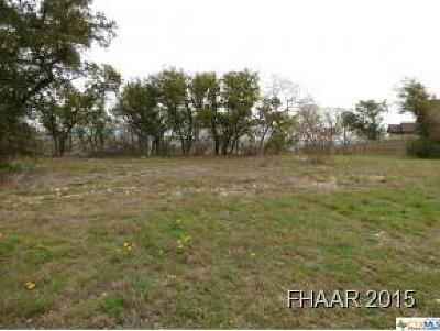 Bell County Residential Lots & Land For Sale: Lot 6 Bald Eagle Drive