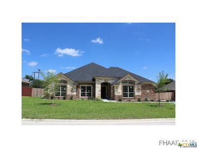 Evergreen Estates Single Family Home For Sale: 1617 Gold Splash Trail