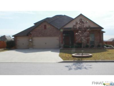 Harker Heights Single Family Home For Sale: 3916 Scenic Trail Drive