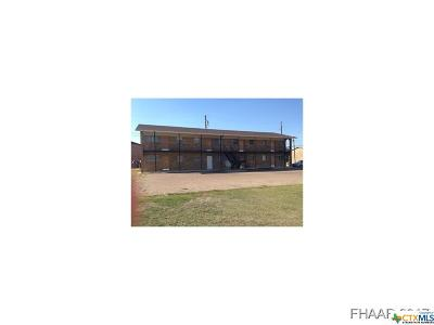 Killeen Multi Family Home For Sale: 2902 Lake Road